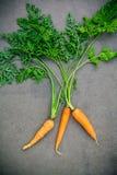 Neues Karottenbündel auf Holztisch Rohe frische Karotten mit Endstück Stockfoto