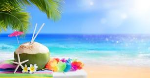 Neues Kokosnussgetränk Stockbilder