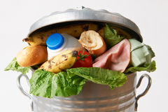 Neues Lebensmittel im Mülleimer, zum des Abfalls zu veranschaulichen Lizenzfreies Stockbild