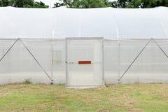 Neues leeres Gewächshaus für organisches Gemüse Stockbilder