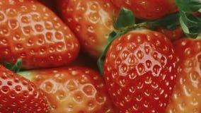 Neues reifes und saftiges Erdbeermakrovideo stock video