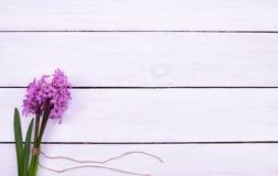 Neues Rosa blüht Hyazinthen auf weißem Holztisch, Draufsicht lizenzfreie stockfotos