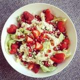 Neues salat Lizenzfreies Stockbild