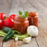 Neues selbst gemachtes Salsa-Bad Lizenzfreie Stockfotos