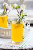 Neues Zitronengetränk mit Rosmarin stockfotos