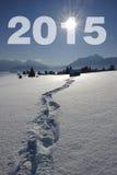 An neuf 2015 Photo stock