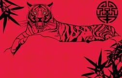 An neuf chinois de tigre Images libres de droits
