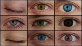 Neuf yeux colorés différents. Montage de HD banque de vidéos