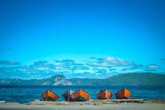 NEUFUNDLAND/KANADA - AUGUST 2014: SOMMER BEI NEUFUNDLAND lizenzfreie stockbilder