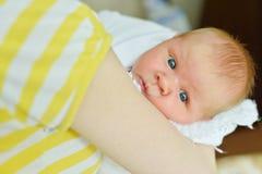 Neugeboren in den Händen des Mutter Stockbild