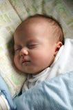 Neugeboren - süßes Schlafen Stockbilder