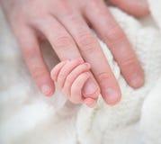 Neugeborene Babyreichweiten für Vati Lizenzfreie Stockfotografie