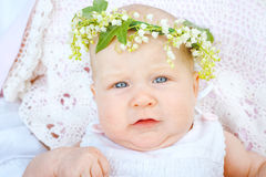 Neugeborene in einem Kranz Lizenzfreie Stockbilder