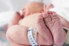 Neugeborene Füße stockbilder