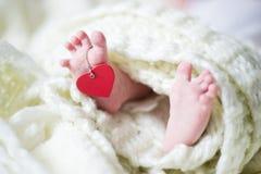Neugeborene Füße mit Innerem stockfotografie
