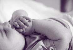 Neugeborene Hände Lizenzfreie Stockfotografie
