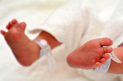 Neugeborene Schätzchen-Füße Stockfotos