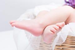 Neugeborene Schätzchen-Füße Stockfotografie