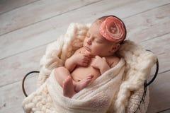 Neugeborenes Baby, das ein Blumen-Stirnband trägt Stockbilder