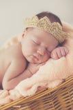 Neugeborenes Baby des süßen Traums in einem großen Korb Stockfotografie