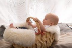 Neugeborenes Baby im Korb lizenzfreie stockbilder