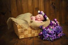 Neugeborenes Baby mit einem Kranz in einem Weidenkorb mit einem Blumenstrauß von purpurroten wilden Blumen Stockfoto
