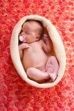 Neugeborenes Baby mit roten Blumen Stockbild
