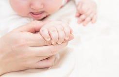Neugeborenes Baby wird durch die Hand das Elternteil gehalten Stockbild