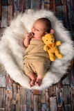 Neugeborenes Baby 2 Wochen alt mit seinem ersten Spielzeug Lizenzfreies Stockbild