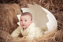 Neugeborenes Kind des netten Babys, das im enormen gebrochenen Ei auf trockenem Stroh in der einzigartigen Studiodesigndekoration Stockbilder