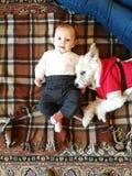 Neugeborenes Lügen auf einer Decke mit einem Hündchen gekleidet als Santa Claus stockbild