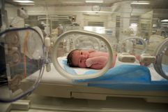 Neugeborenes lateinisches Baby Stockfotos