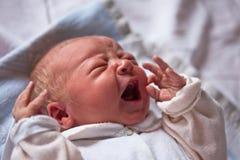 Neugeborenes Schätzchen Lizenzfreies Stockbild