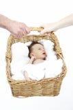 Neugeborenes Schätzchen angehalten im Korb von Parents lizenzfreies stockfoto