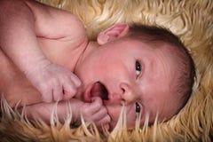 Neugeborenes Schätzchen auf Wolldecke Lizenzfreie Stockbilder