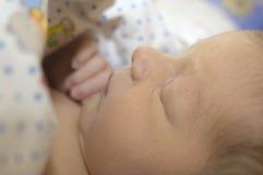 Neugeborenes Schätzchenschlafen Lizenzfreie Stockfotografie