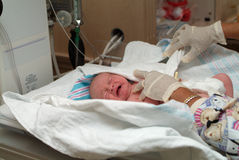 Neugeborenes swaddling Stockbilder