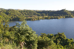 Neugierig seien Sie, Madagaskar Lizenzfreie Stockbilder