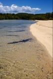 Neugierige mamoko Lagune und Küstenlinie Lizenzfreie Stockbilder