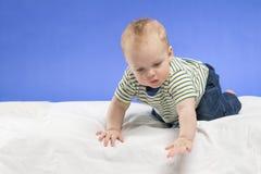Neugieriges achtmonatiges Kind in den Blue Jeans auf der weißen Decke, Atelieraufnahme, lokalisiert auf blauem Hintergrund Stockfotos