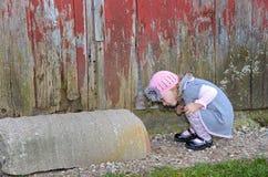 Neugieriges kleines Mädchen Lizenzfreies Stockfoto