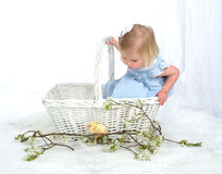 Neugieriges Mädchen im Korb mit Huhn Lizenzfreie Stockbilder