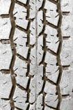 Neumático Fotografía de archivo