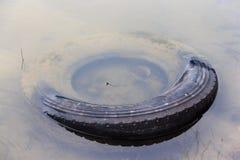 Neumático de coche viejo sumergido en agua Foto de archivo libre de regalías