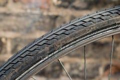 Neumático de la bicicleta Foto de archivo libre de regalías