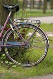 Neumático de la bicicleta Imágenes de archivo libres de regalías