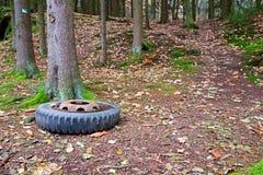 Neumático viejo en bosque imagen de archivo