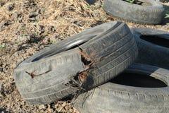 Neumático del daño fotografía de archivo