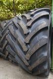 Neumáticos del invierno Imágenes de archivo libres de regalías