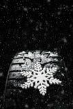 Neumáticos del invierno Neumático para el invierno Fotografía de archivo libre de regalías
